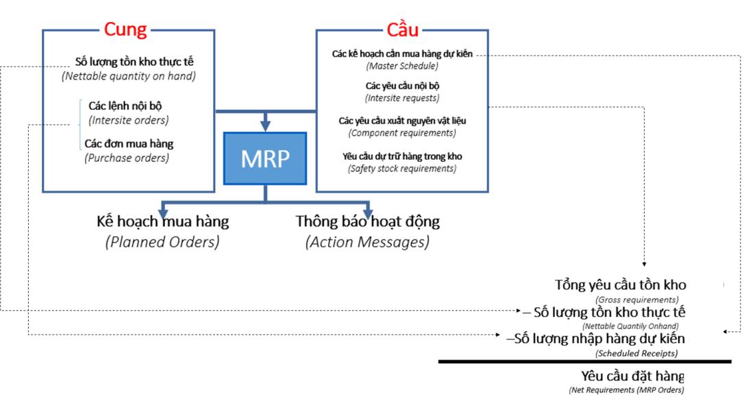 ERP_MRP_Anh_Huong_Cung_Cau_Den_Lap_Ke_Hoach_Mua_Hang_2