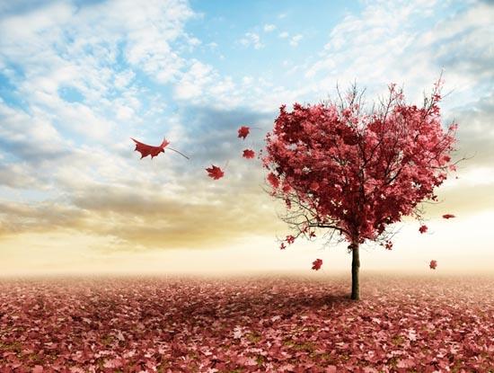 Tuyển tập 1000+ câu nói hay bằng tiếng anh hay nhất mọi thời đại về cuộc sống, tình yêu, tâm trạng 1