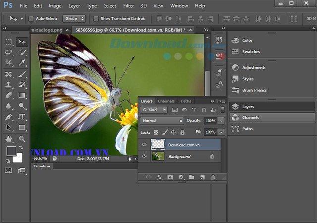 Các lớp Vec-tơ trong Photoshop CS6
