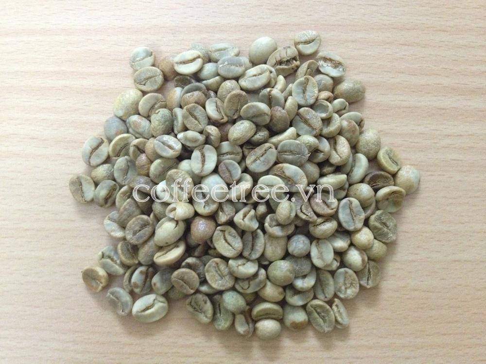 Kiến thức cà phê: Cách phân biệt các loại cafe hiện nay