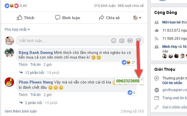 Phần mềm lấy số điện thoại trên Facebook 2020 3
