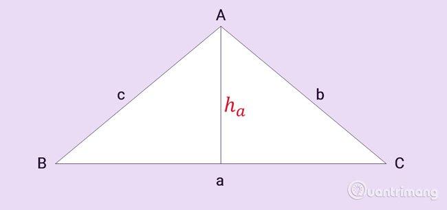 Để tính diện tích tam giác bạn cần xác định loại tam giác đó là gì