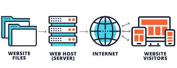 Hosting là gì? Người mới nên dùng hosting nào? 2020