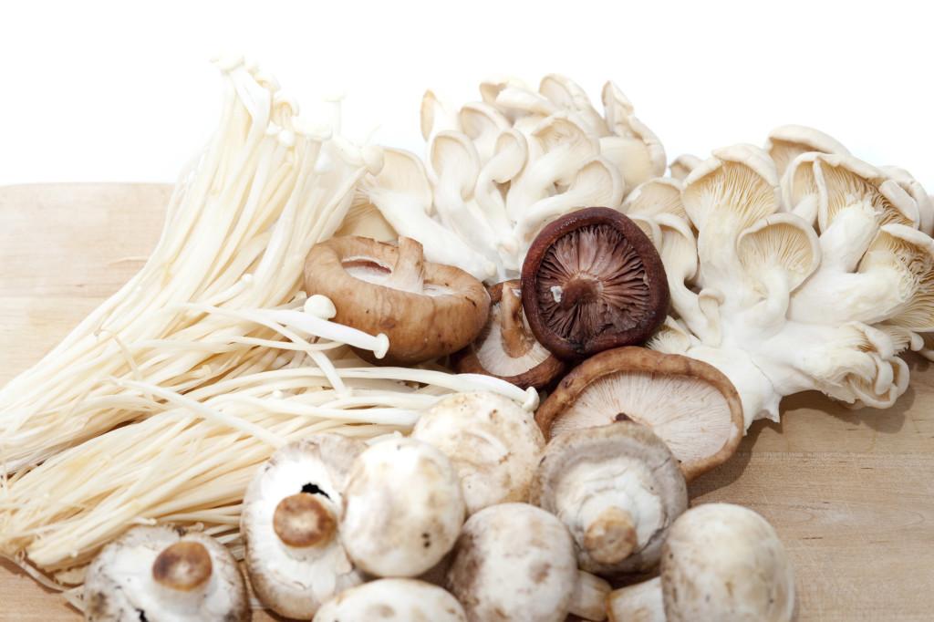 Variety Of Fresh Edible Fungi