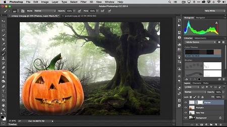 Adobe Illustrator Cc 2017 Portable 2