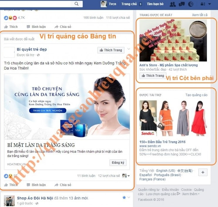 Cong Ty Tvcn Vietnam 253727