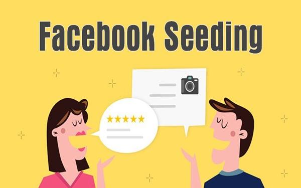 Huong Dan Cach Su Dung Seeding Facebook Hieu Qua Nhat 1 3 8