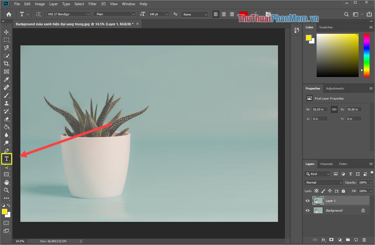 Photoshop bổ sung 4 kiểu tạo hình đơn giản cho Rectangle Tool đấy là hình chữ nhật/hình vuông, hình tức giác vót góc, hình tròn/hình elip và hình lục giác